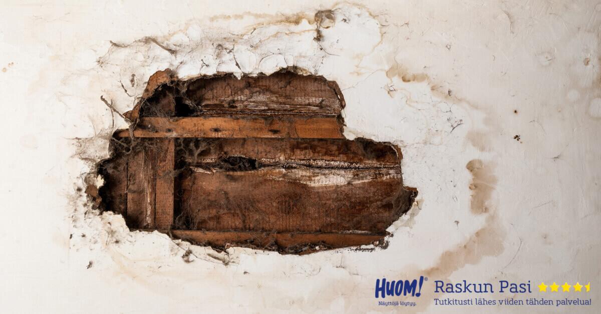 Kosteusvaurio koettelee kotia, kuntoa ja kukkaroa